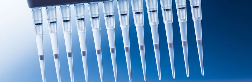 High throughput screening in early drug discovery
