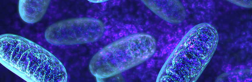 Aptuit | Microbiology