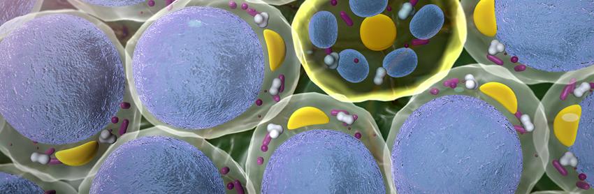 Aptuit | Biomarkers