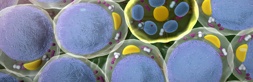 Aptuit   Biomarkers