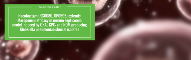 Nacubactam (RG6080, OP0595) Extends Meropenem Efficacy in Murine Septicemia Model Induced by OXA-, KPC- and NDM-producing Klebsiella pneumoniae Clinical Isolates