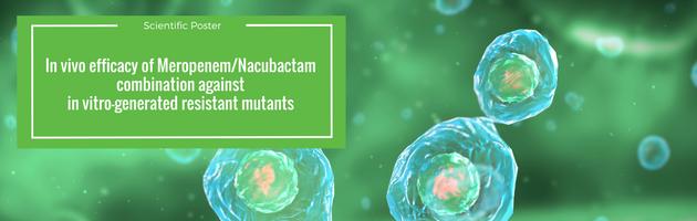 In vivo efficacy of Meropenem/Nacubactam combination against in vitro-generated resistant mutants