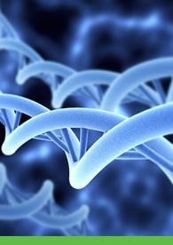 Aptuit | Validation of MITRA sampling technology for drug discovery PK studies