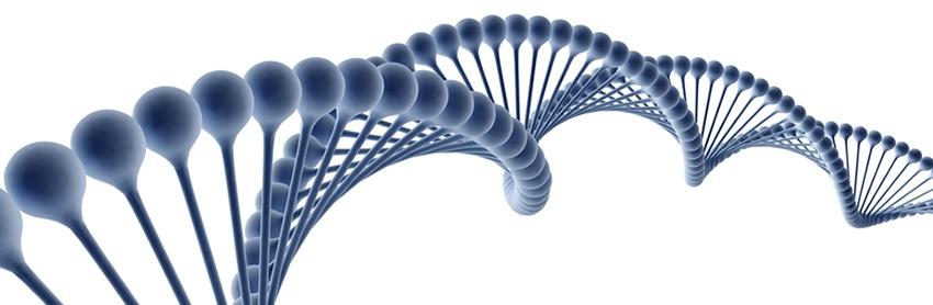 Aptuit | Genetic toxicology