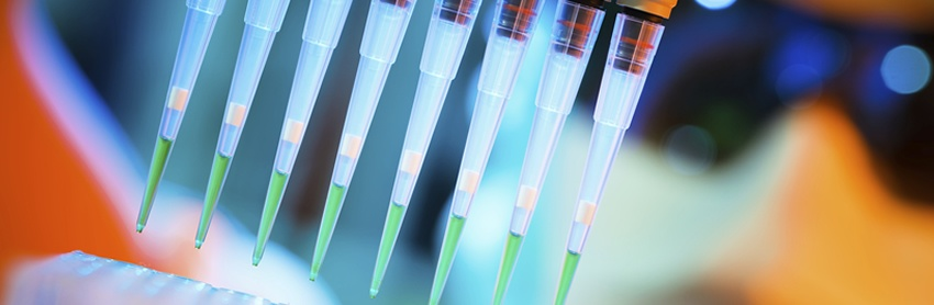 Hit Identification and High throughput screening in early drug discovery